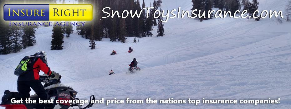 snowtoys banner